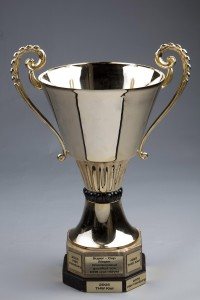 HBL Super Cup 2013